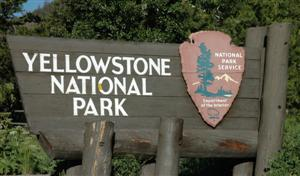 Yellowstone National Park, East Entrance